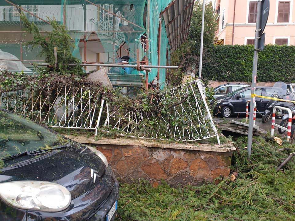 alberi caduti a roma vento pioggia danni