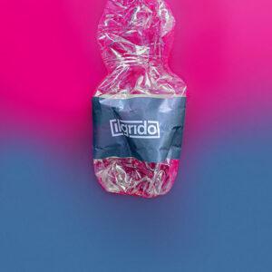 """""""PLASTICA"""" – il nuovo singolo della rock band Il Grido"""